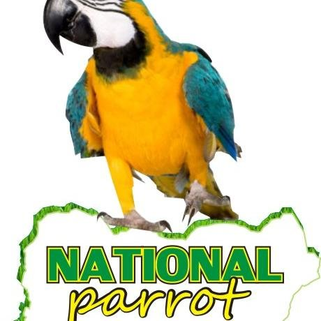 national parrot - cover