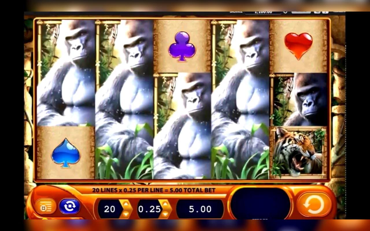 Avatar - Brunei Casino Bonuses