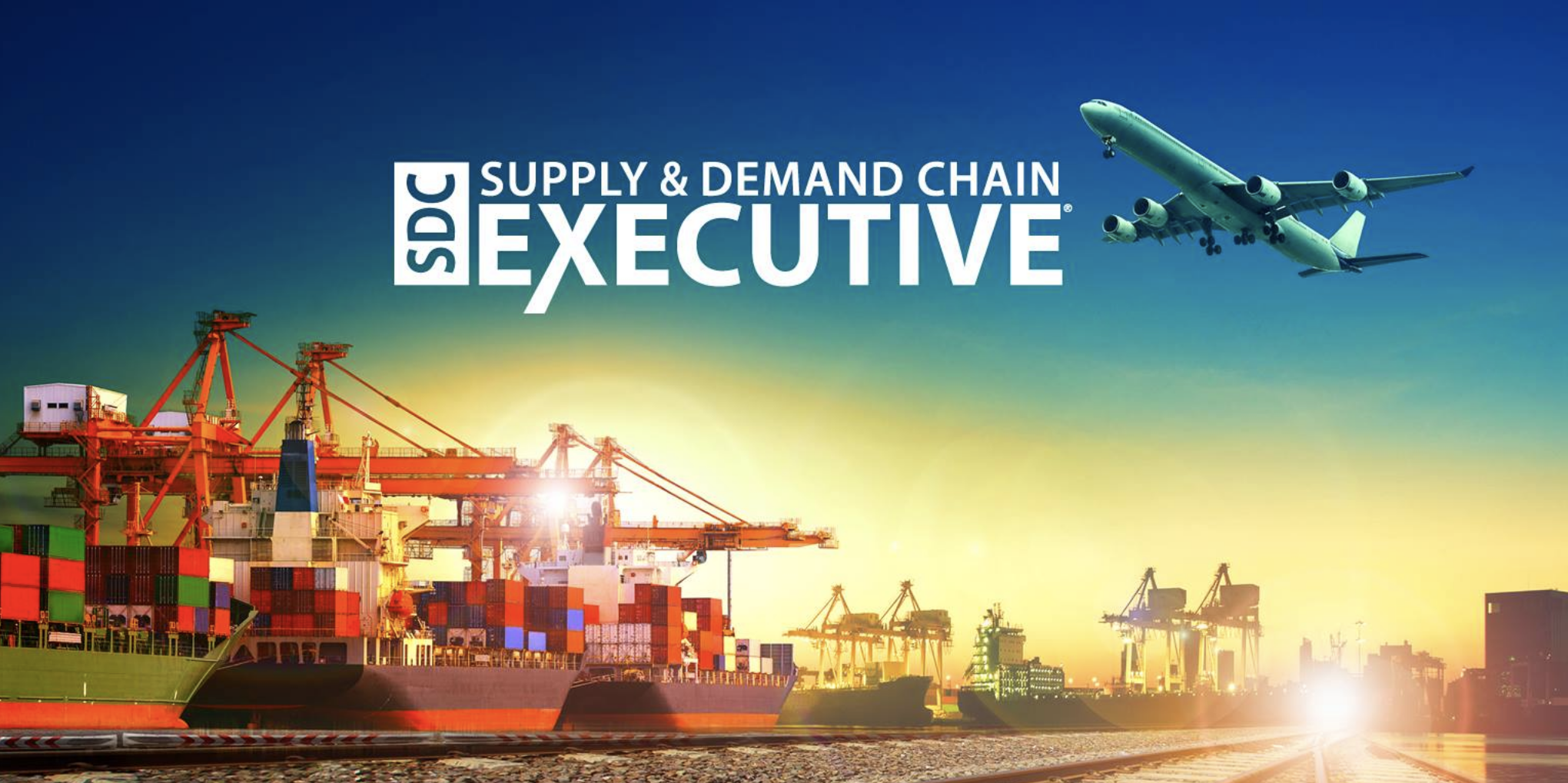 Avatar - Supply & Demand Chain Executive
