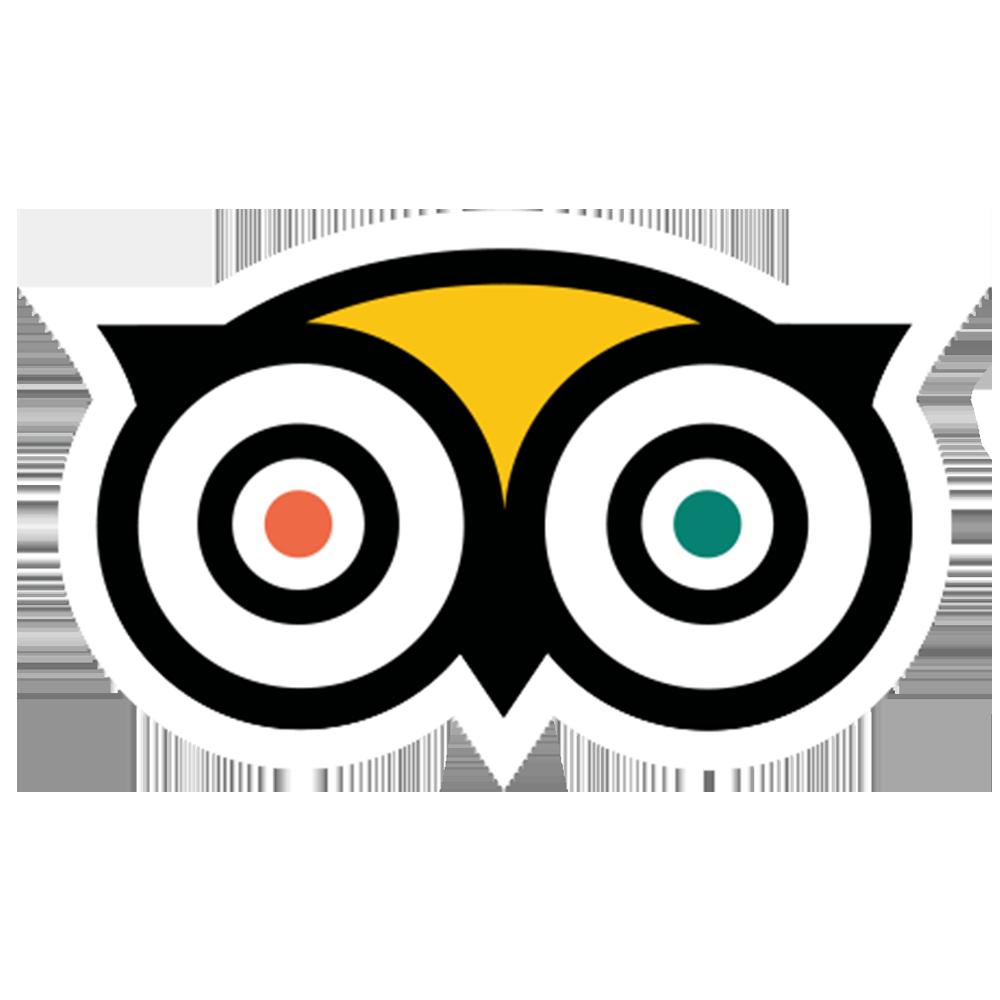 Avatar - TripAdvisor