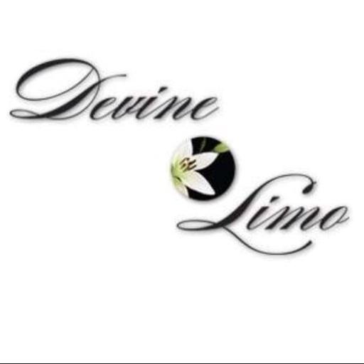 Avatar - Devine Limo of Santa Fe