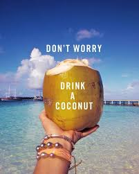 Happy Coconuts Travel Blog - cover