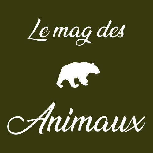 Avatar - Le Mag des Animaux - Ouest-France