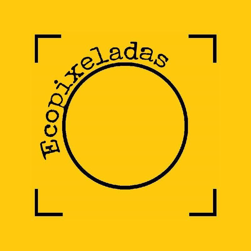 Ecopixeladas - cover