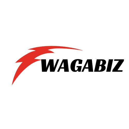 WAGABIZ - cover