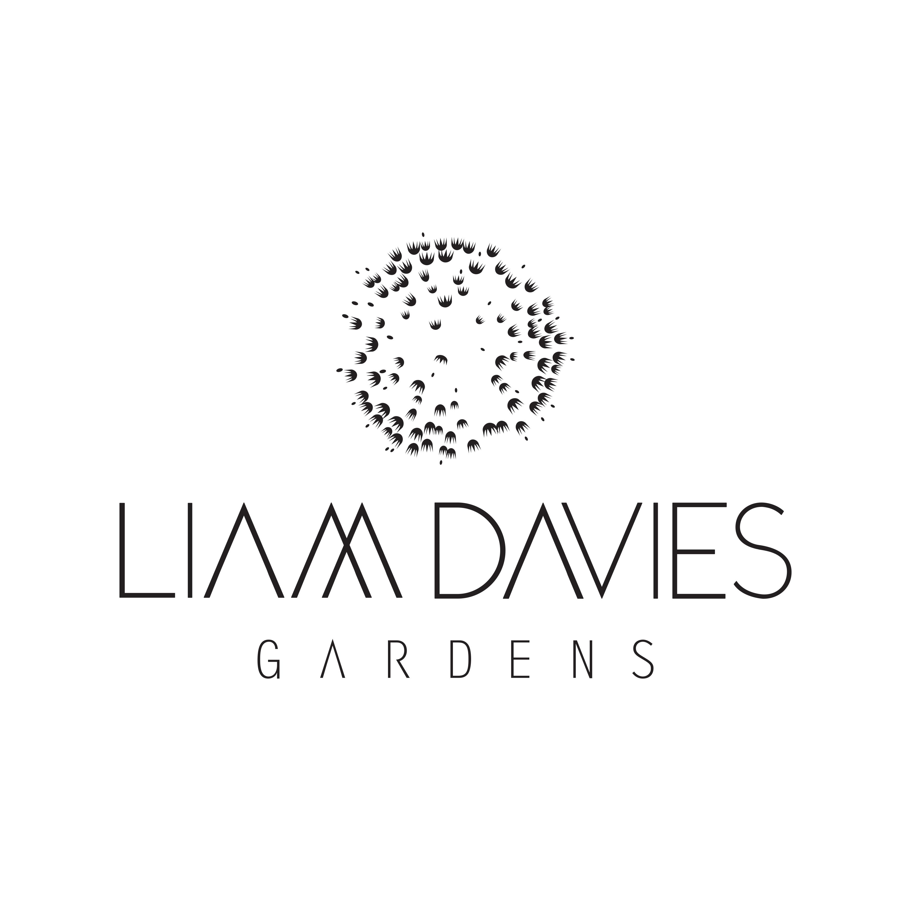 Avatar - Liam Owen Davies