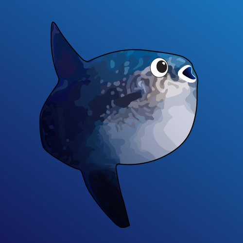 My Mola - cover