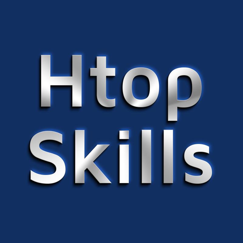Avatar - Htop Skills