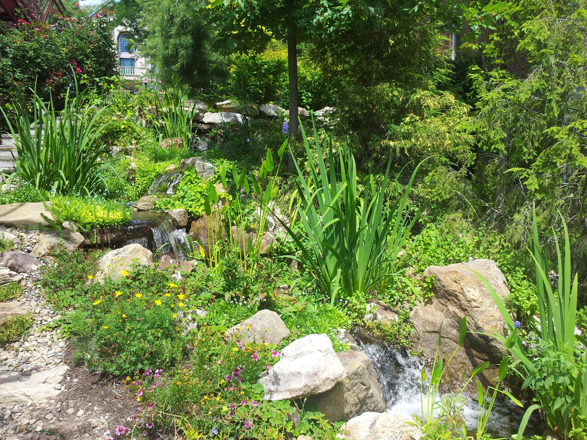 Pondless Water Features cover image
