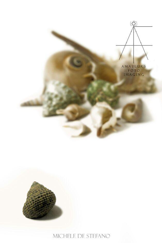 Kimfoto - Magazine cover