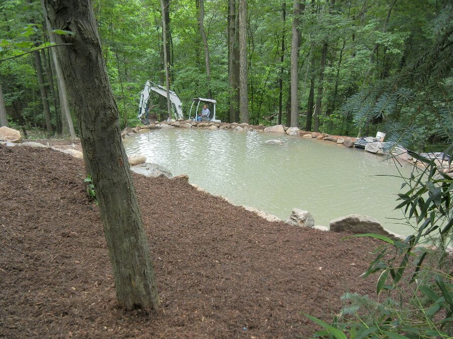 A Swimming Pond!! - cover