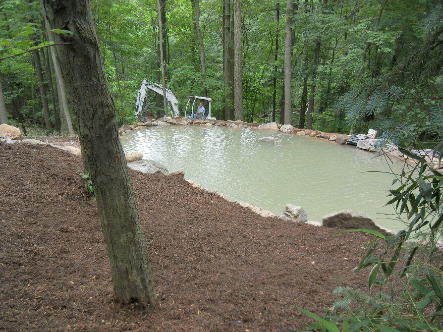A Swimming Pond!! - portada