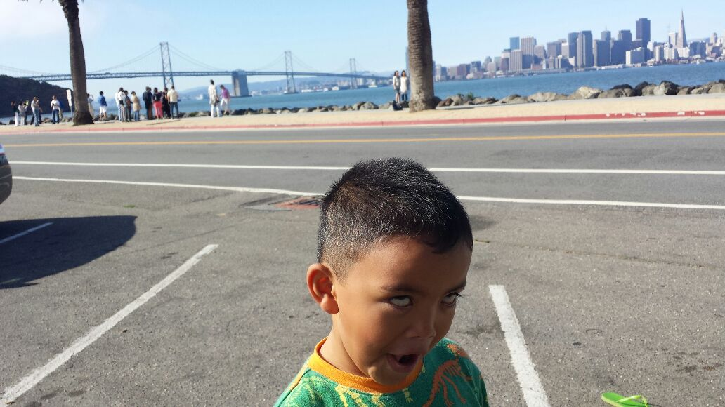 Just Checking The New Bay Bridge. - Cover