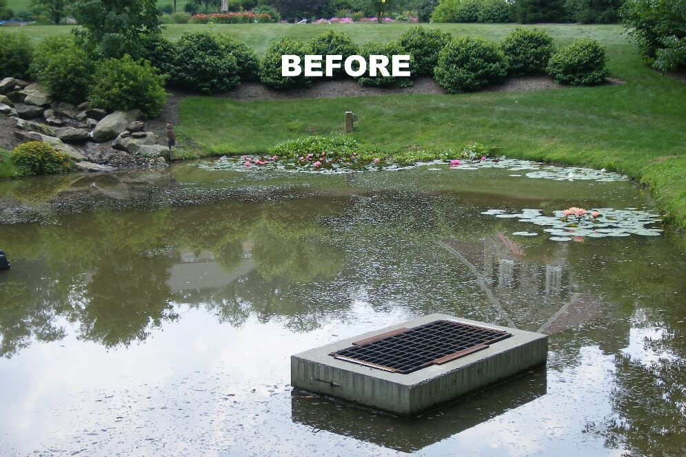Lake Rebuild Before And After - cover