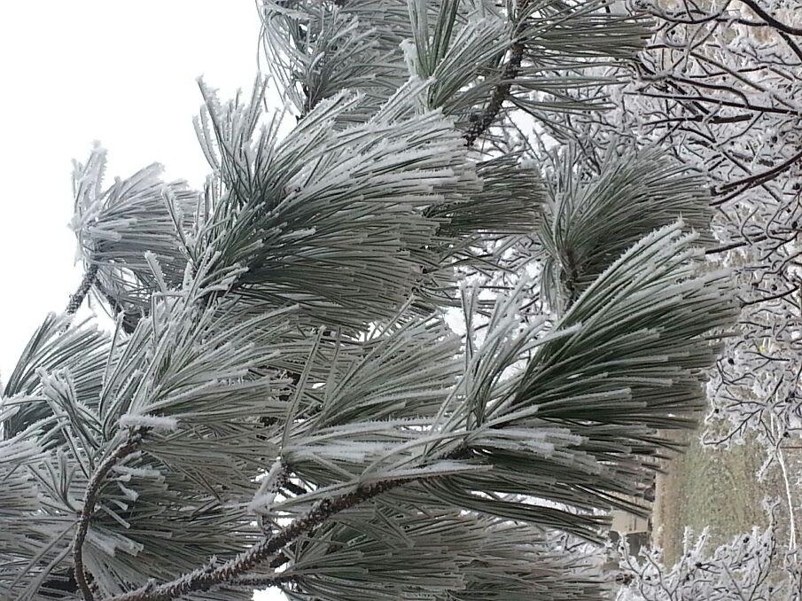 Winter in the northwest 2014 - Magazine cover