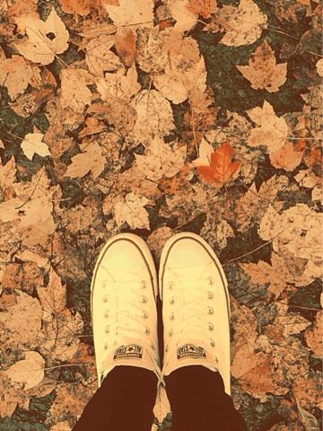 Fall - Magazine cover