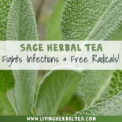 Herbal TEAS - Magazine cover