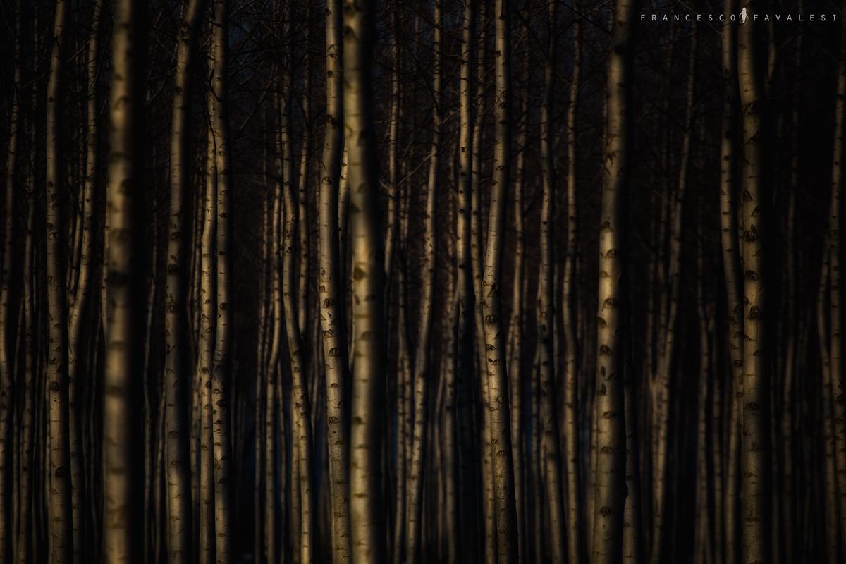 Respiro CONTROVENTO  - Magazine cover