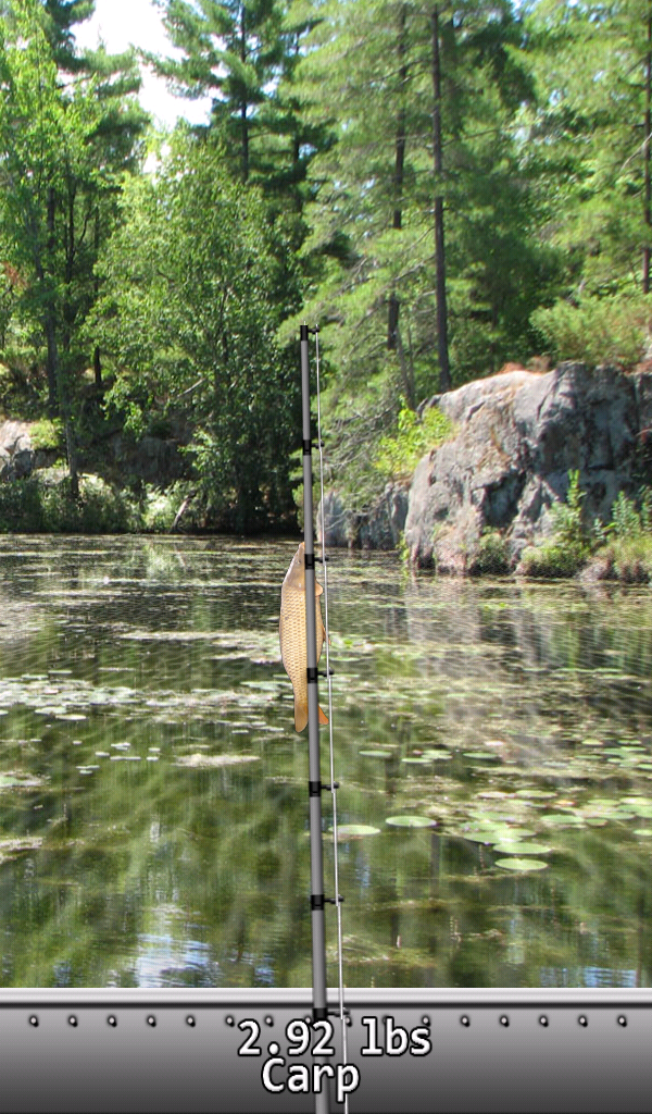 Fishing Lake  - Magazine cover