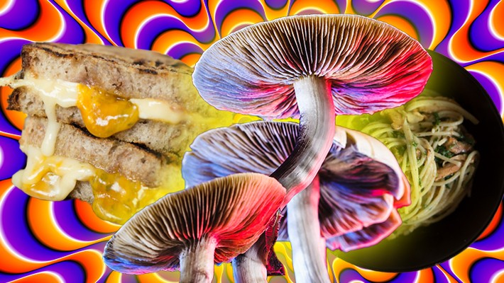 Two Experts On Cooking With Psilocybin & 'Grilled Cheese Shroomwiches'
