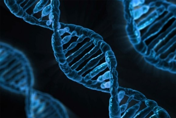 Synthetic DNA could be the next tech breakthrough