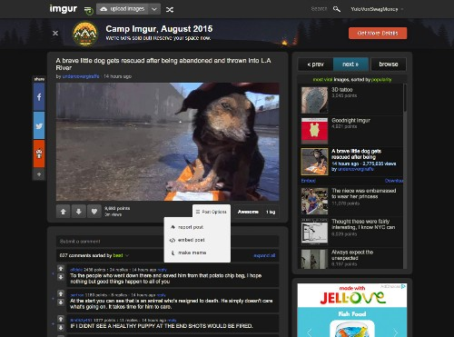 Imgur introduces embed option for online publishers to repost and attribute photos on their own site