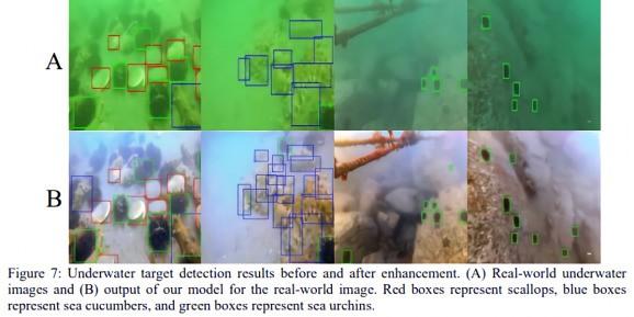Researchers detail AI that de-hazes and colorizes underwater photos