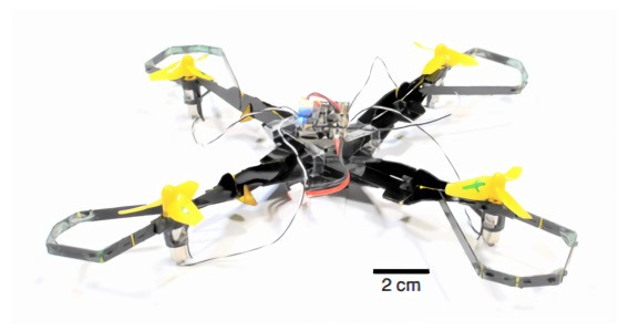 Drone airframe design is inspired by pill bugs