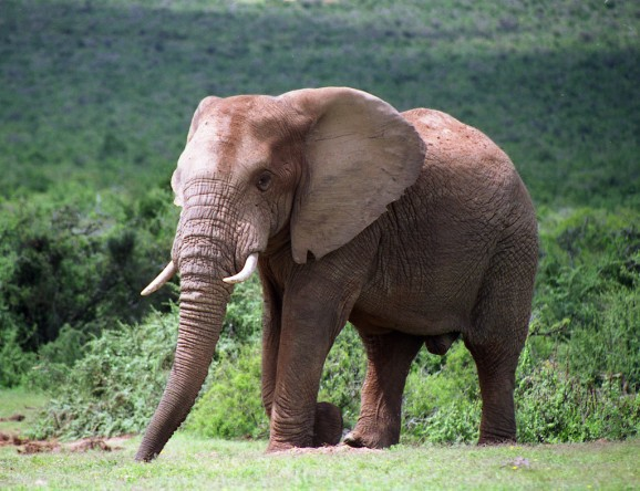 Hadoop in the wild: These are the 3 biggest challenges