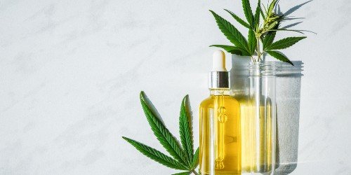 10 best CBD oils to buy in 2020