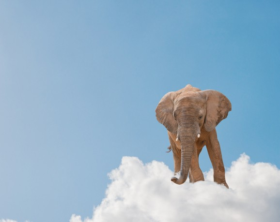 The elephant in the cloud: Cloudera adds support for Hadoop on Amazon