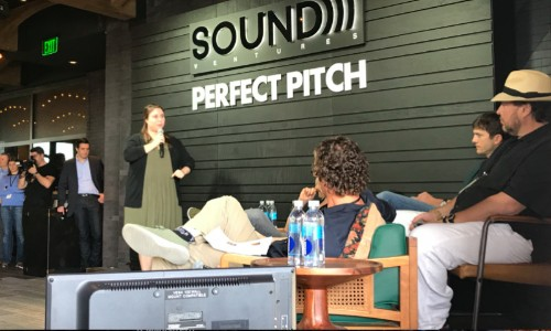 LearnLux wins PerfectPitch competition, gets $400,000 from Sound Ventures and Marc Benioff