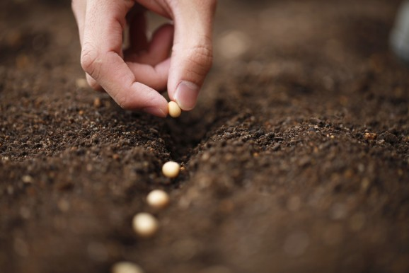 5 things you should know when pricing your seed round