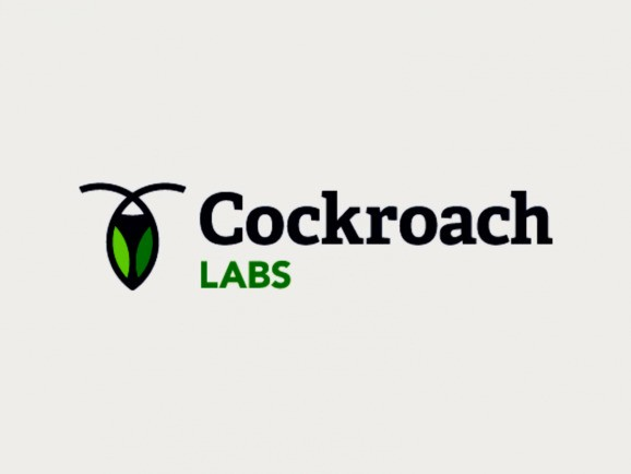 Cockroach Labs raises $55 million for ultra-resilient databases