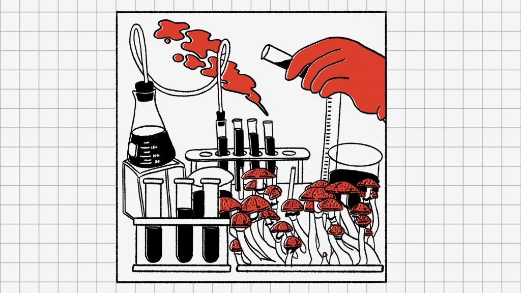 Get Ready for Pharmaceutical-Grade Magic Mushroom Pills