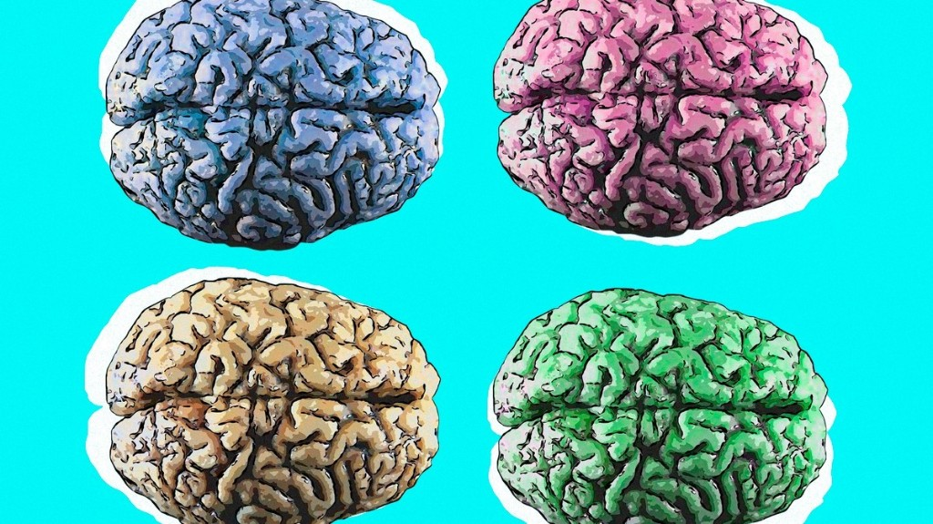 5 Things That Could Help You Improve Your Brain Function