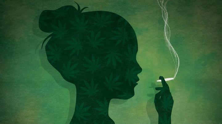Plant Medicine - Magazine cover