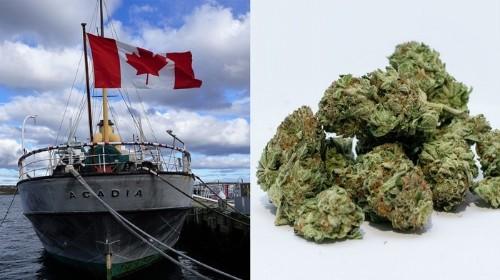 Pourquoi est-ce qu'autant de cannabis canadien se retrouve à Hong Kong?