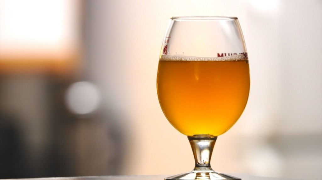 Hops Could Help You Fight Breast Cancer