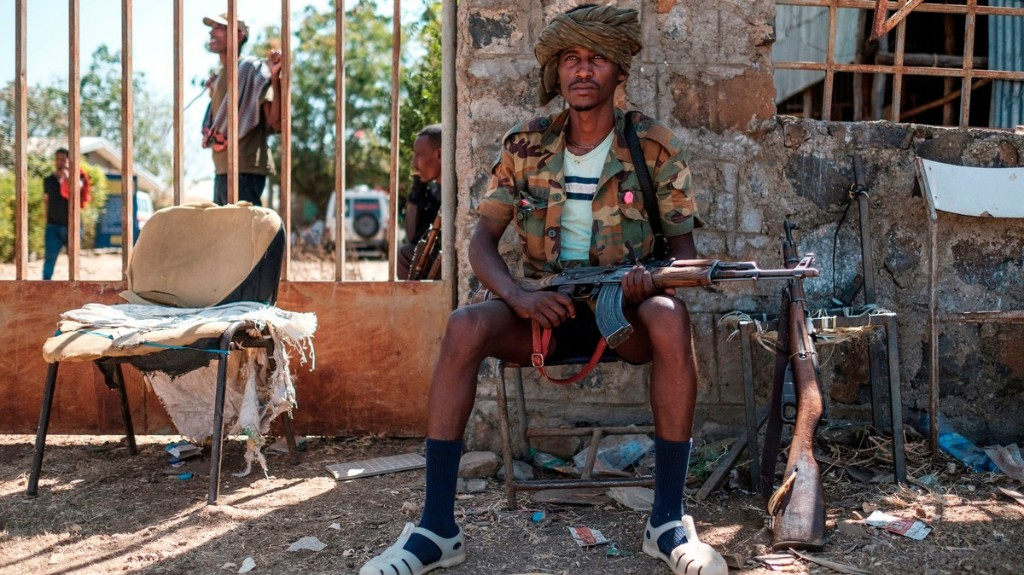 Ethiopia Declares Victory, but Rebel Leaders Vow to Fight On