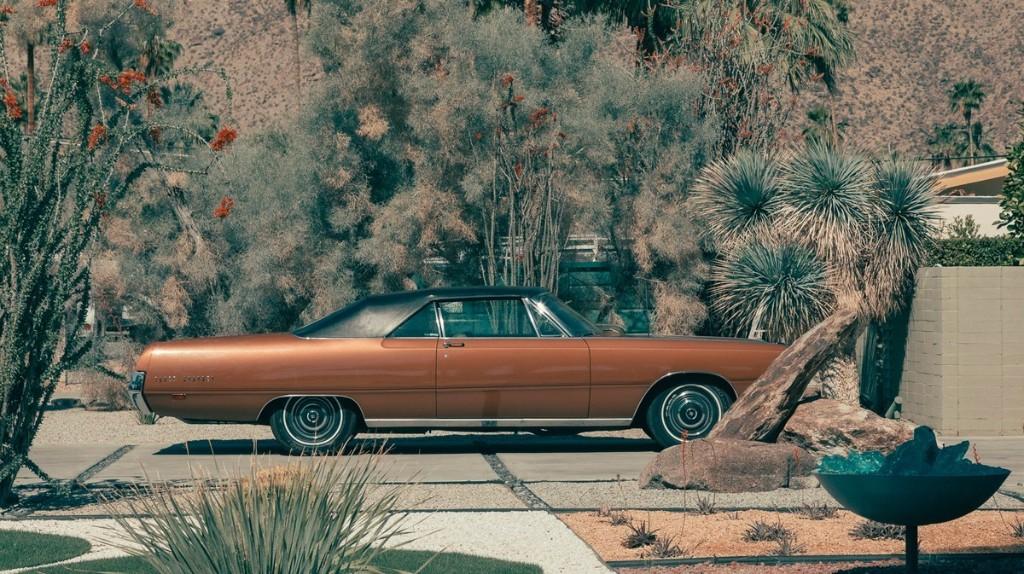 Pourquoi Palm Springs incarne-t-elle une terre de liberté ?