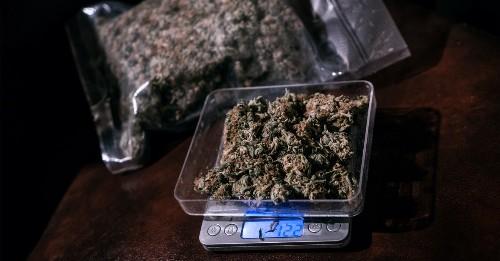 Wir haben Cannabis-Dealer gefragt, ob bald das Gras ausgeht