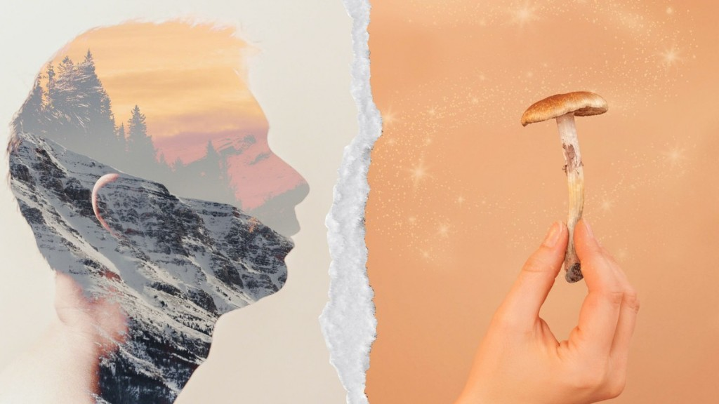 Tripping on Shrooms Could Help Climate Change