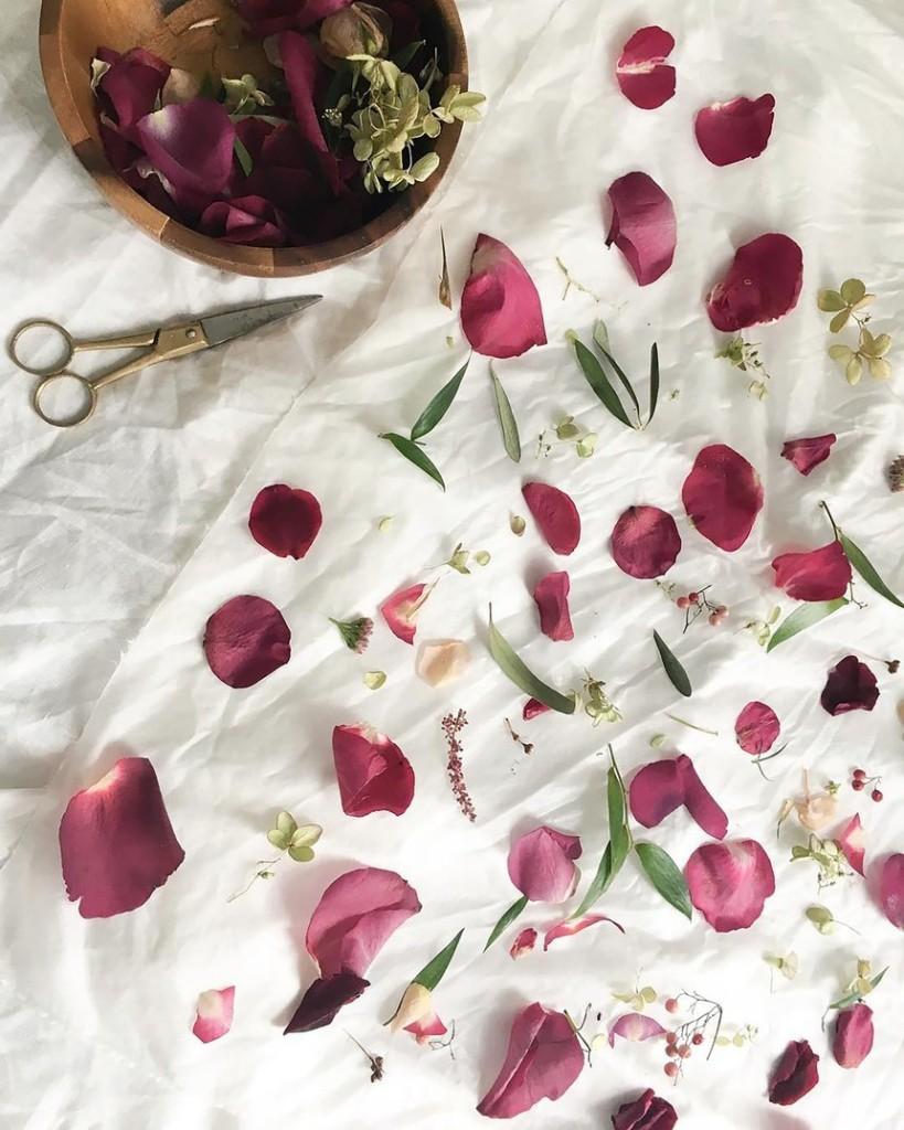 Garden - Magazine cover