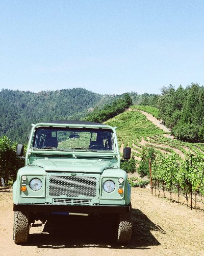 5 Vineyard Experiences That Go Beyond Your Typical Tasting