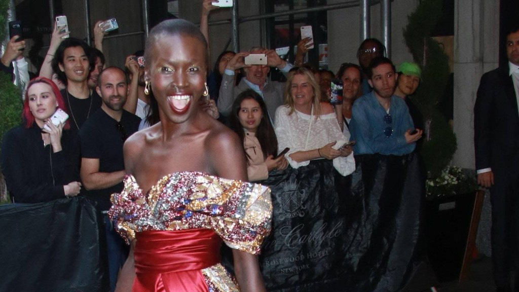 Alek Wek on the Moments That Defined Her Trailblazing Career in Modeling