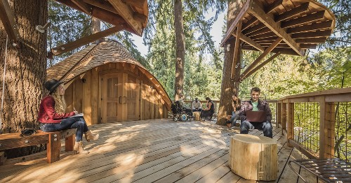 Microsoft built tree houses for its employees