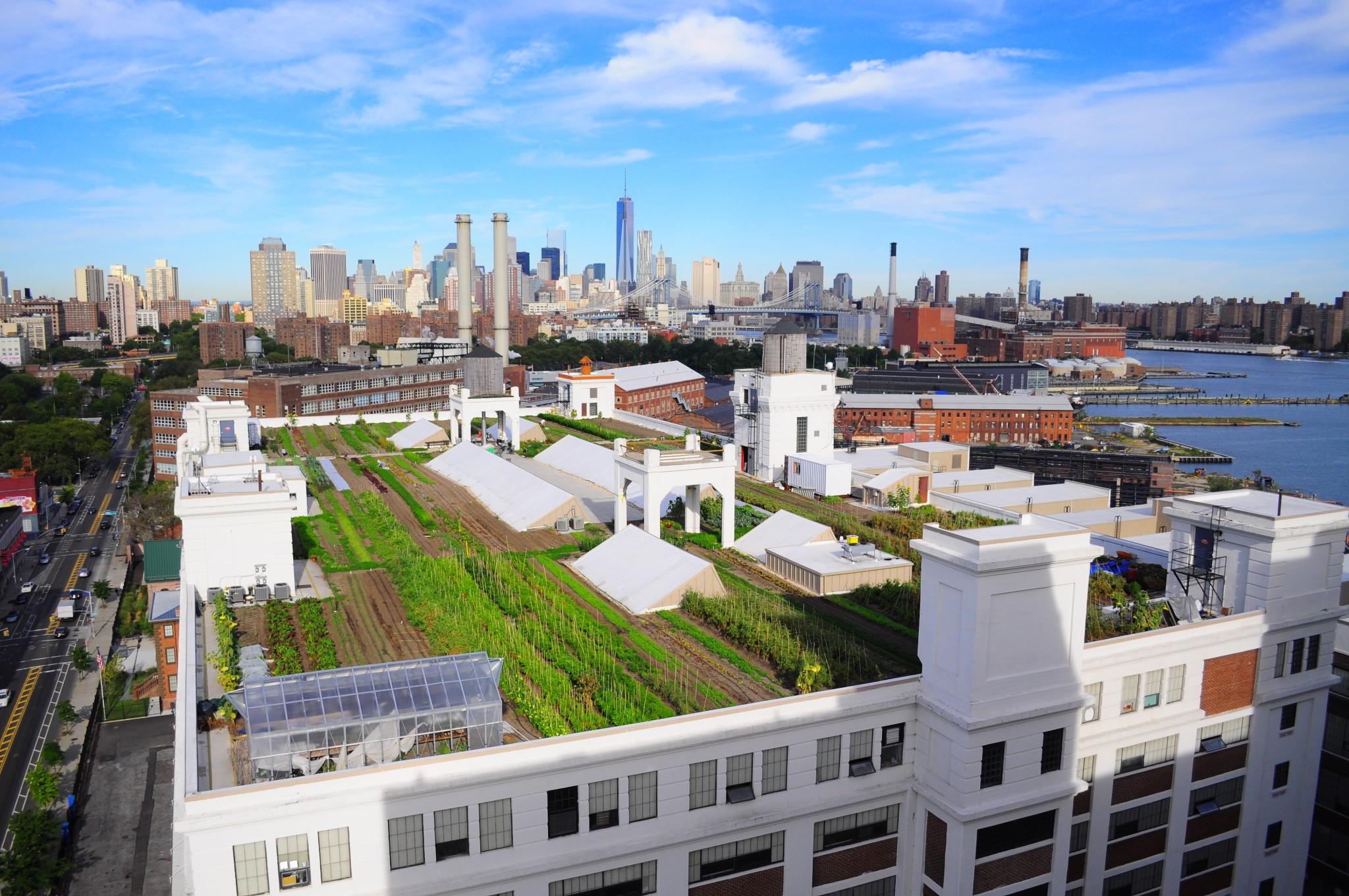 Urban & Indoor Farming - cover