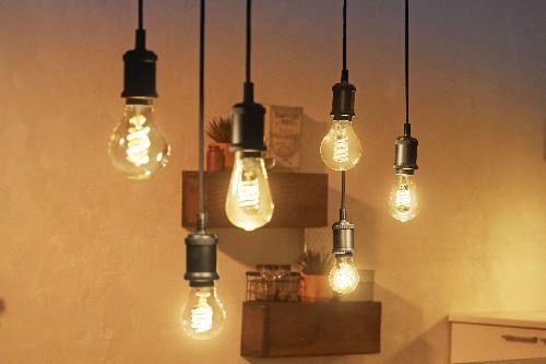 Philips Hue gets Edison-style light bulbs, a smart plug, and updated Hue Go lamp