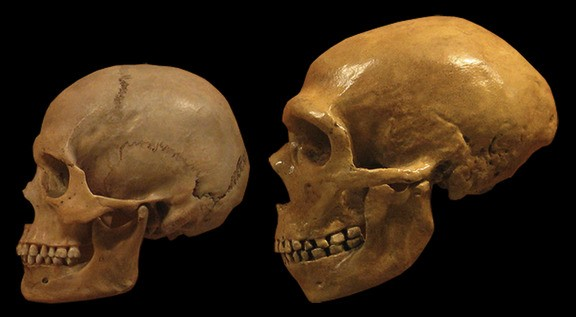 Humans and Neanderthals had sex a lot earlier than scientists thought